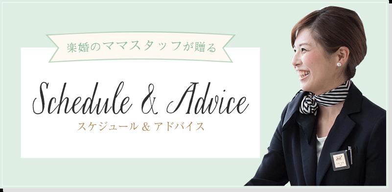 スケジュール&アドバイス