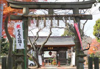 楼門の両袖には、登録文化財の鳥天狗と大天狗座像が安置されている。身体健固のご利益が。