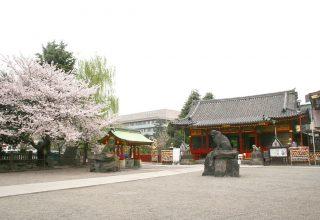 地下鉄浅草駅から7分。浅草寺や雷門、仲見世など観光スポットが集積。