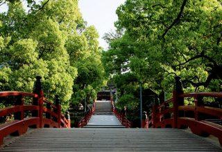 緑に包まれた境内。橋を渡り水の上を歩くことで心身ともに清められるとされている。