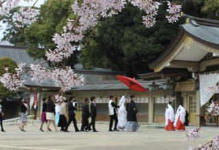 大自然に抱かれた佇む神社。春は護国神社ゆかりの桜に見守られながらの挙式が実現。