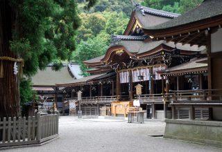1664年、徳川家綱公によって再建された拝殿は重要文化財指定。ご神木「巳の神杉」がそばに。