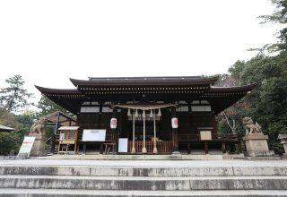 拝殿に連なる流造り銅板葺の本殿。本殿の真裏には、樹齢三百年という大楠が佇んでいる。